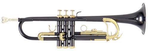 ROY BENSON TR-101K труба Bb